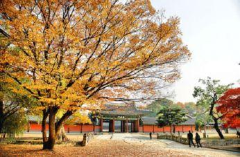 du-lich-seoul